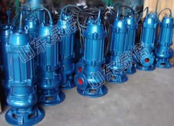 QW Vertical Electric Submersible Sewage Pump